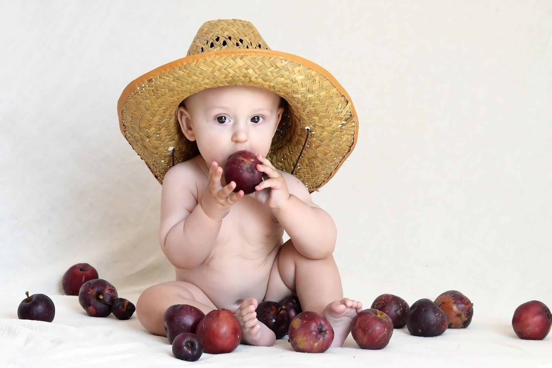 Bebês: alimentação complementar é tão importante quanto amamentação